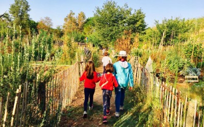 educazione agli orti